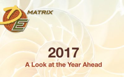 2017 – A Look at the Year Ahead